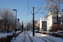 Straßenbahn in der Wannerstraße. Foto: Armin Jacob
