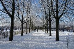 Eschholzpark. Foto: Armin Jacob